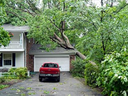 Storm Damage St. Louis