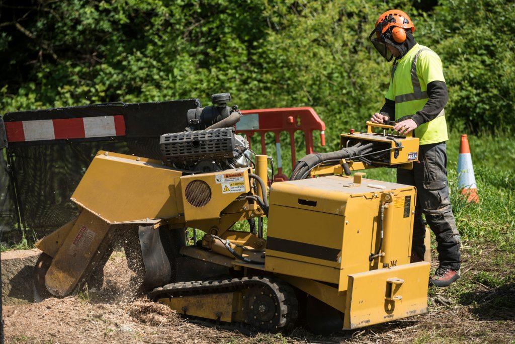 Stump grinding Mid America Tree Experts
